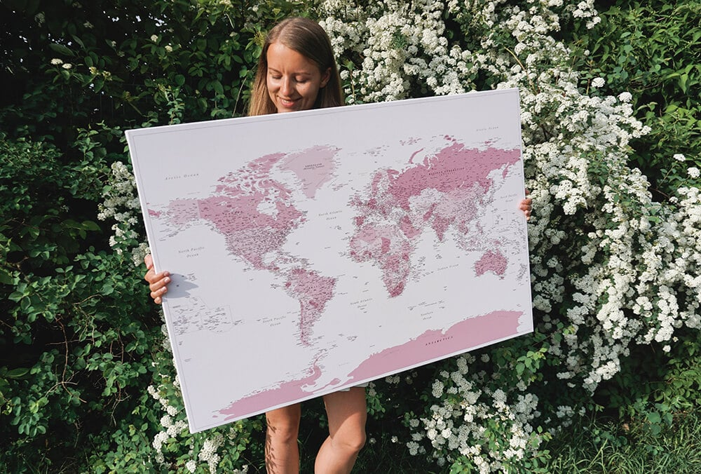pink push pin world map