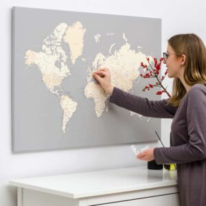 travel map pinboard with pins canvas tripmap