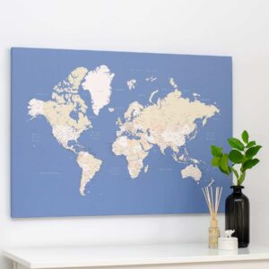 world map pin baord