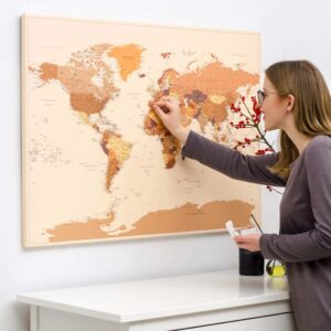 world map wall art with pins tripmap