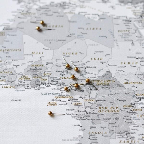 world map with pins grey modern tripmap
