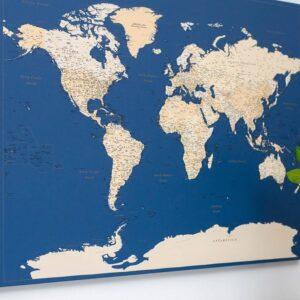 dark blue world map canvas with pins tripmap