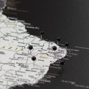 pinned black colour pins on canvas map