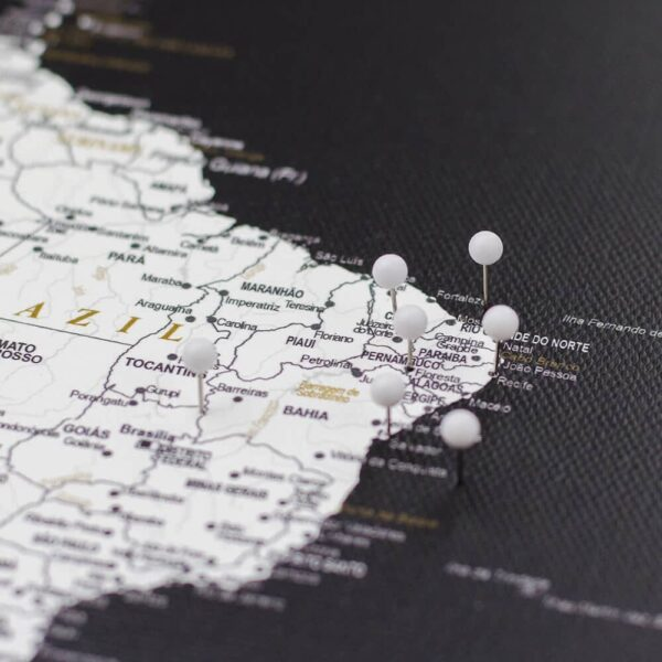 pinned white colour pins on canvas map
