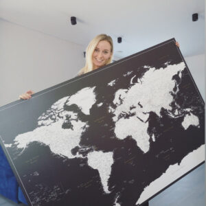 black and white world map with push pins tripmap