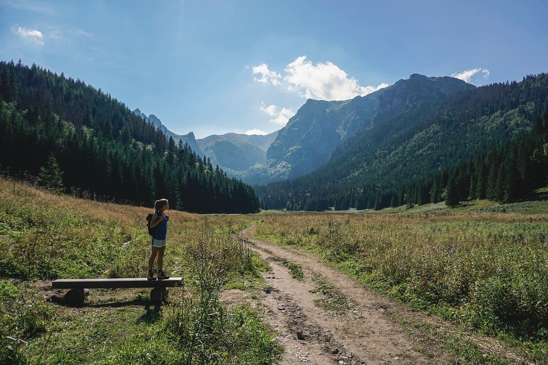 tatras mountain valley