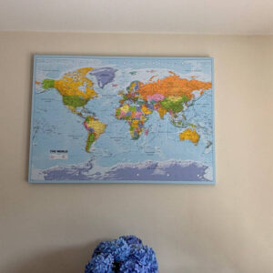 political world map with pins on canvas