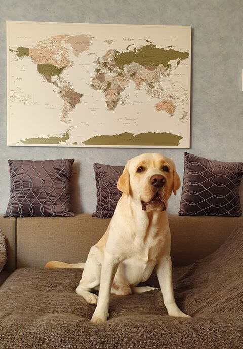world map pinboard best travel gift