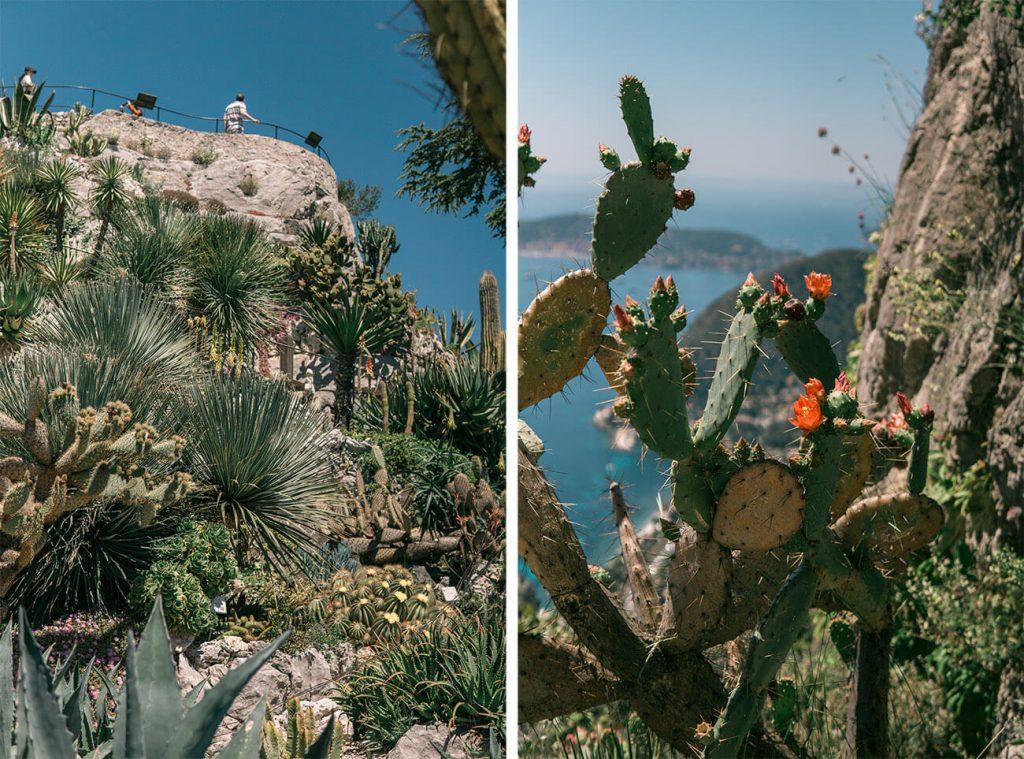 eze village exotic garden