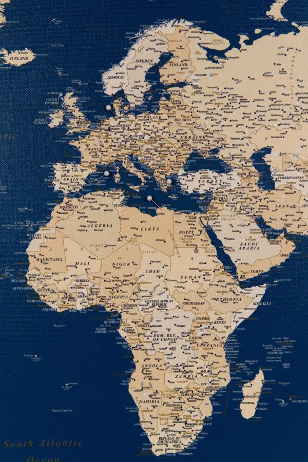 dark blue world map with pins
