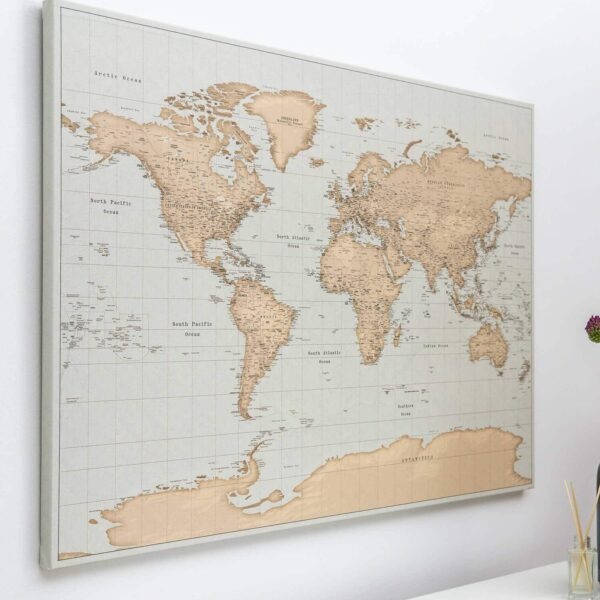 vintage push pin map with pins on wall